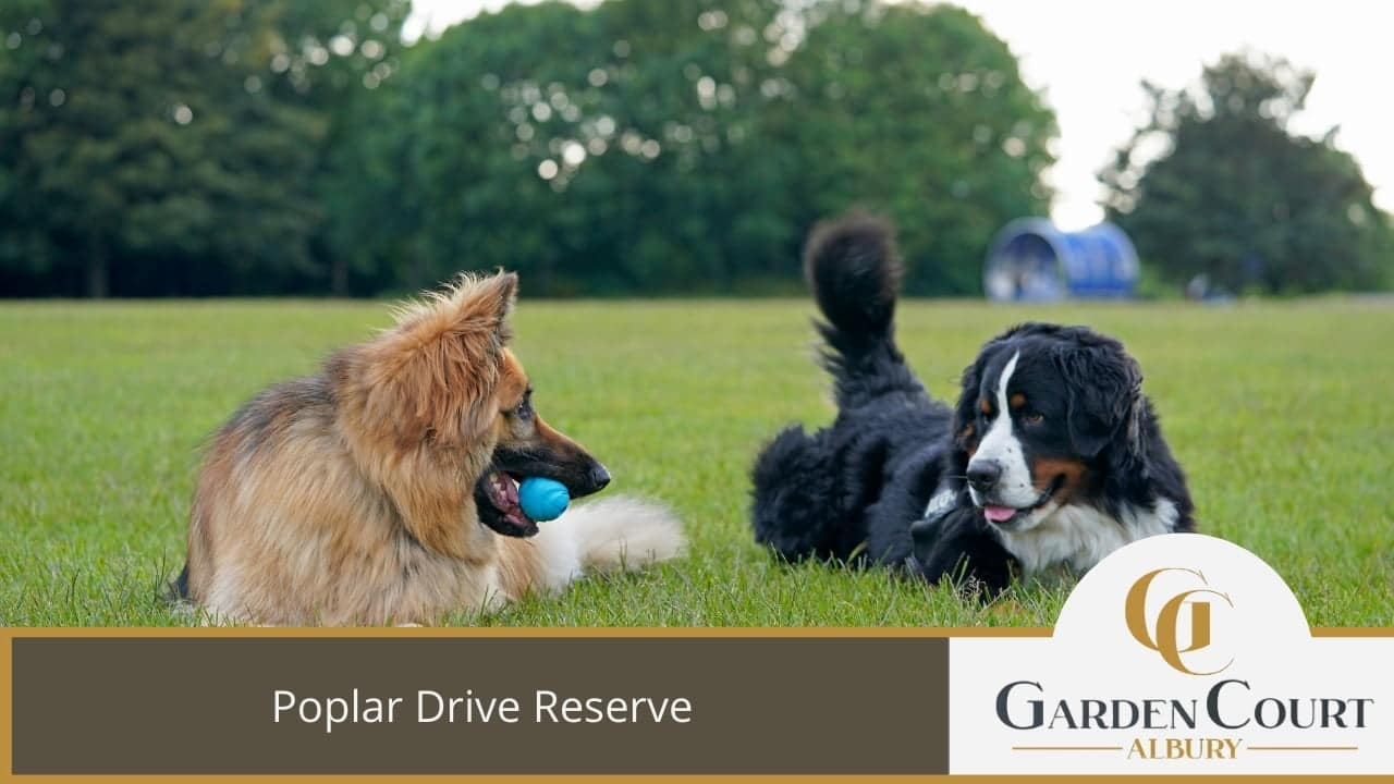 Poplar Drive Reserve