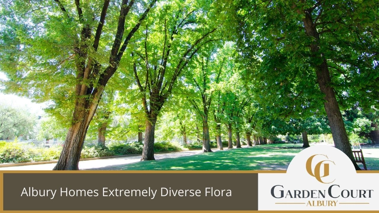 Albury Homes Extremely Diverse Flora